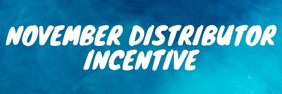 November Distributor Incentive