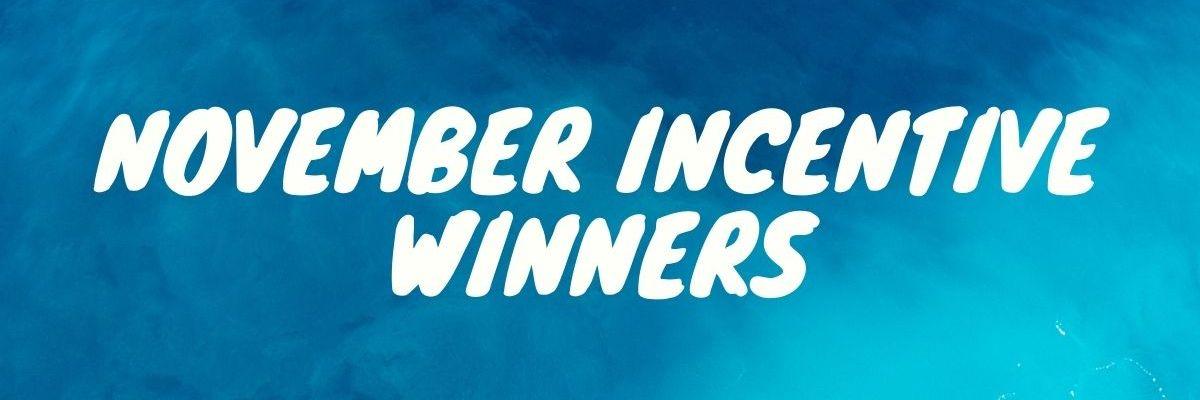 November distributor Incetive Winners